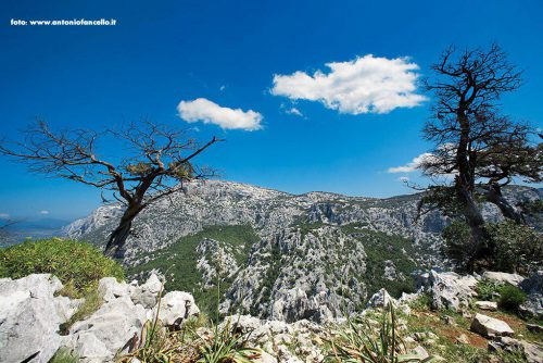 Dorgali - Monte Tiscali